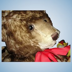 """Huge """"Happy"""" Steiff TeddyBar - 25""""! 1926 Limited Edition Replica of famous Brown tipped Teddy Bear"""