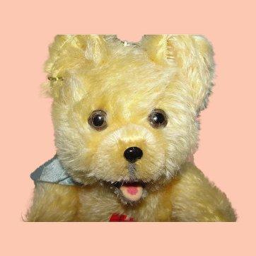 "Extraordinary 6 1/2"" (17cm) Musical Austrian Toddler Teddy Bear by Fogel ca 1950's!"