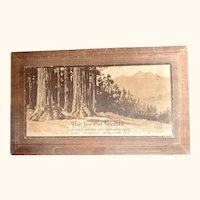 "Wooden fruit box: The Forest Giants: ""sunkissed sweets and Orchards gold in giant redwood centuries old"": 40-50s"
