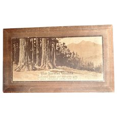 """Wooden fruit box: The Forest Giants: """"sunkissed sweets and Orchards gold in giant redwood centuries old"""": 40-50s"""
