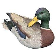Ducks Unlimited Preening Mallard by John Gewerth