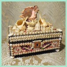 Extravagant Shell Art Box - Victorian French