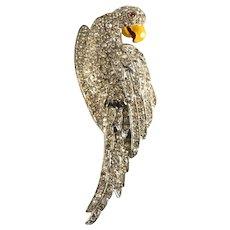 Brooch 1930s Pot Metal Parrot Bird Pin Rhinestones Vintage