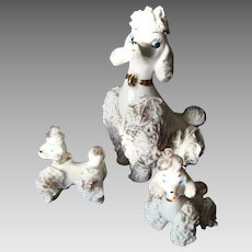 Spaghetti Poodle Mama and 2 Poodle Pups - Vintage - 1950's