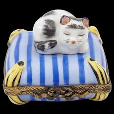 Vintage Limoges Porcelain Enamel Pill Box Sleepy Cat Kitten on Pillow