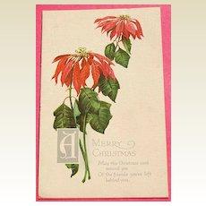 Art Nouveau Christmas Post Card Series No. 169 Wilting Poinsettia