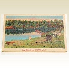 Greetings From Ruston, La.  Postcard #43353
