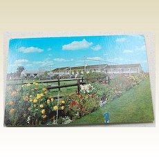 Vintage Postcard Sparhawk Resort Ogunquit Maine