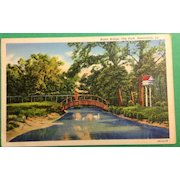 Vintage 1942 Rustic Bridge City Park Alexandria Louisiana Postcard