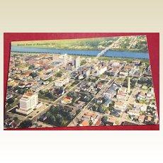 Vintage Greetings From Alexandria Louisiana Post Card