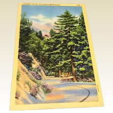 Vintage Post Card Highway In The California Mountains