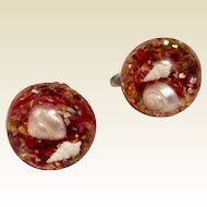 Vintage Clear Lucite Screw Back Dome Earrings With Confetti & Red  Sea Shells