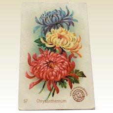 Victorian Trade Card For Arm & Hammer Brand Soda