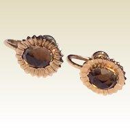 Vintage 12 K Gold Filled Smokey Topaz Screw Back Earrings