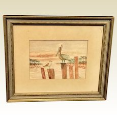 Vintage Framed Pelican Picture Artist Signed