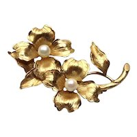 Wells 14K Gold Filled Faux Pearl Brooch