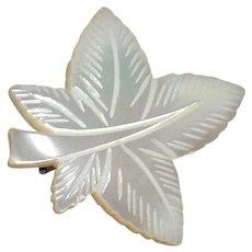 Mother Of Pearl Leaf Brooch