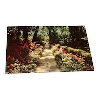 Bellingrath Gardens, Mobile, Ala. Postcard