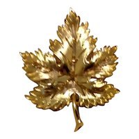 Gold Tone Metal Maple Leaf Brooch