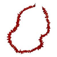 Vintage Salmon Branch Coral Necklace