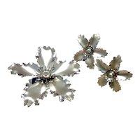Silver Tone AB Crystal Brooch & Earrings
