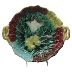 Antique Majolica Morning Glory Compote