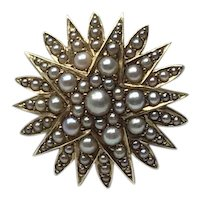 14K Yellow Gold Seed Pearl Starburst Brooch & Watch Pin