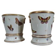 Fine Pair Early 19th century Spode Porcelain Flower Root Pots Cachepot Planters Decorated with Butterflies
