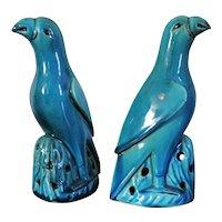Pair Antique 19th century Chinese Monochrome Porcelain Parrots in Turquoise Glaze