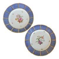 Large Pair Antique 18th century German Porcelain Botanical Basketweave Plates