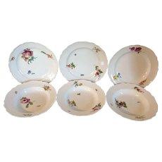 Six Antique 18th century German Meissen Porcelain Plates & Soup Bowls with Botanical Decoration
