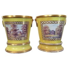 Pair Antique Early 19th century English Regency Coalport Cachepot Vase Root Pots and Stands in Bright Yellow Ground 1800 - 1805
