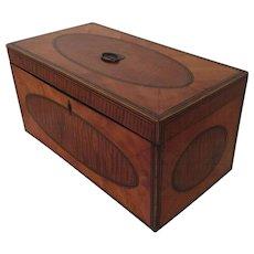 Large Antique 19th century English Regency Satinwood Tea Caddy Box 1810