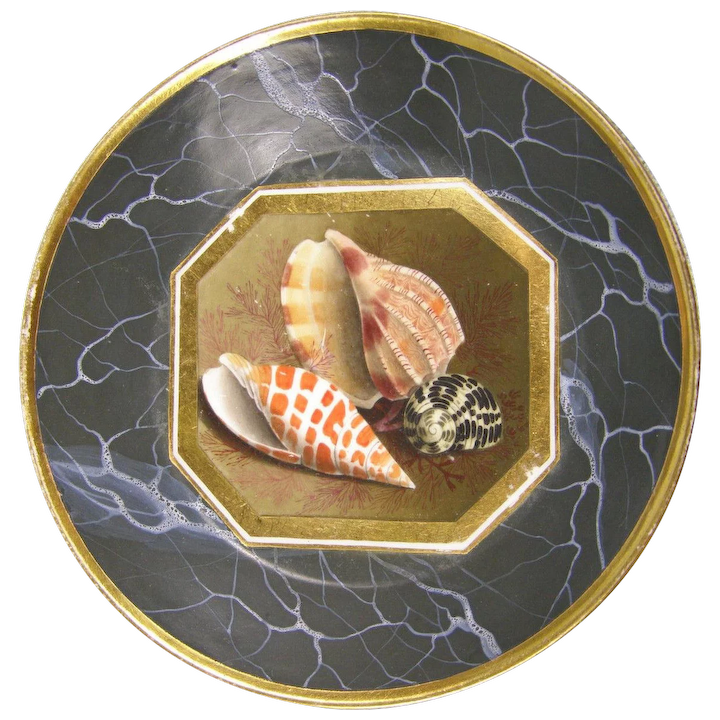 Antique Early 19th Century Worcester Porcelain Flight Barr Conchological Sea Shell Decorated Saucer Plate With Faux Marble Ground 1805
