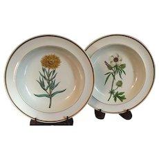 Pair Antique 18th century English Georgian Creamware Botanical Plates with Named Specimens