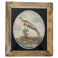 Antique 18th century English George III Needlework Picture of an Exotic Bird in Original Gilt Wood Frame