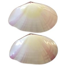 Antique Pair 19th century Wedgwood Conchology Pearlware Creamware Pink Clam Sea Shell Serving Plates