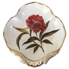Antique 18th century English George III Derby Porcelain Botanical Shell Shape Dish Plate Painted by William Quaker Pegg