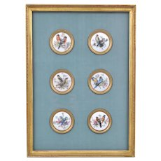 Set Six Framed French Limoges Porcelain Roundel Plaques with Gilt Bronze Collars Ornithological Bird Subjects