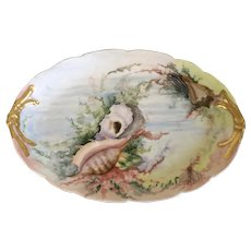 Fine Antique Limoges French Porcelain Platter or Tray Decorated with Hand Painted Sea Shells Jean Pouyat circa 1900