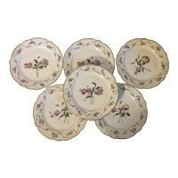 Set 6 Antique 19th century French Paris Porcelain Botanical Plates