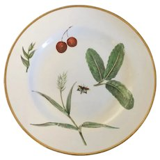Antique 18th century Chelsea Porcelain Botanical Plate Decorated with Fruit and Butterfly