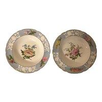Pair Antique English Regency Spode Porcelain Botanical Bowls Early 19th century
