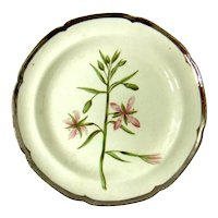 Antique Early 19th century English George III Creamware Pearlware Botanical Plate Decorated with Hand Painted Specimen & Silver Luster Border 1810