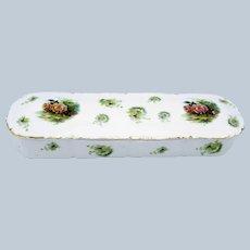 Antique Rosenthal Bavarian Porcelain Decorated Ladies Glove Box, BEAUTIFUL!
