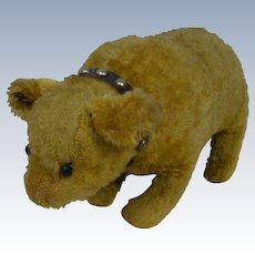 Great Old Antique Bear on All Fours, Shoe Button Eyes, Original Leather Collar
