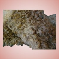 Large Piece of Lambs Wool Mohair for Making Skin Wigs