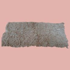 Panel of Antique Lace on Tulle Fabric 17 in. x 8 in. for Doll Dressing