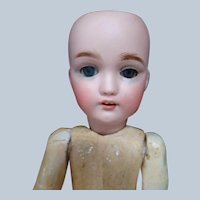 10-3/8 In. German Franz Schmidt Child Doll (Head by Simon & Halbig) on French Composition Body, Pierced Nostrils