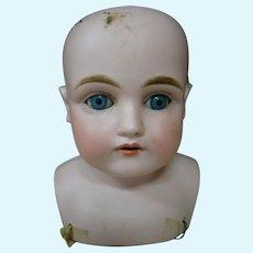 Antique Kestner Bisque Shoulder Head Mold #154, Blue Sleep Eyes, 10 In. H.C